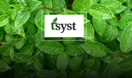Sri Lanka Tea Board Back Office System (tSyst)